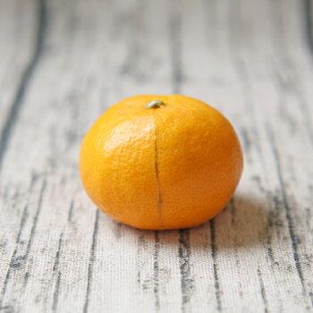 【fちび吉1-5】ちび玉吉田みかん1.5kg★これで最後!数量限定で緊急入荷★(多少の枝傷・葉傷・黒点有り)(家庭用・3S〜2Sサイズ込み)【送料無料】みかんミカン吉田みかん蜜柑柑橘