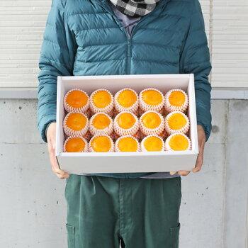 【特撰03】【特撰】吉田みかん3kg(M、Lサイズ揃えで30玉前後・ネット掛・化粧箱入)【送料無料※北海道・沖縄・離島への配送は別途500円の送料となります。】みかんミカン吉田みかん蜜柑柑橘