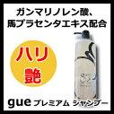 ギュープレミアムシャンプー500mlサイファguepremium【サロン専売品サロンプロ】【RCP】