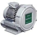 昭和電機 昭和電機 電動送風機 渦流式高圧シリーズ ガストブロアシリーズ(2.2kW) U2V220 1台 U2V220 1 台