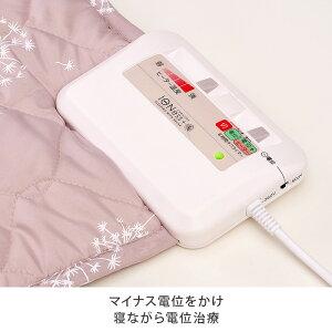 マイナス電位をかけ眠っている間に電位治療