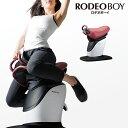 スライヴ(THRIVE) ロデオボーイ(RODEO BOY) FD-017 [フィットネス機器] 大東電機工業 スライブ エクササイズマシン フィットネス シェイプアップ ダイエット バランス 体幹 乗馬マシン 筋トレ 太もも 長内転筋 腹直筋 外腹直筋 傍脊柱筋 FD017 トレーニング 運動不足