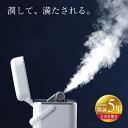 【公式店限定5年保証】フェイススチーマー TB-G001JP...