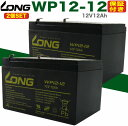 [2個セット] UPS・溶接機 各種(12V12Ah)WP12-12 バッテリー 溶接機 ナノアーク Z6000-BT12 NPH12-12 RE11-12 PE12V12F2 GP12120 互換 UPS BKPro500 APC Smart-UPS1000