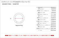 【ANATOMETAL】アナトメタル/ボディピアスステンレス・セグメント・リング12Ga.
