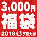 【送料無料】宇部かま●2018新春福袋♪3,000円コース