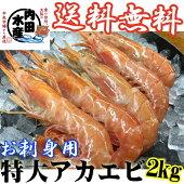 【送料無料】訳あり特大アカエビ2kg 約50尾