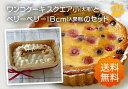 パティシェの手作り・人間用の素材を使用、ワンコ(犬用)ケーキ(スクエア小)とベリーベリー(人間...