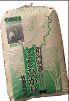 【玄米】【送料無料】新潟豊栄自然農場コシヒカリ30kg