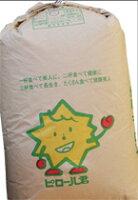 本場!福井産ピロール米コシヒカリ