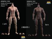 【INFINITUS TOYS】1/6 FLEXIBLE MUSCLE BODY 1/6スケール 男性ボディ(ヘッドなし)