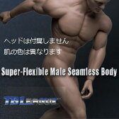 【TBLeague】male seamless body PL2015-M30 TBリーグ 1/6スケール シームレス男性ボディ(ヘッドなし)