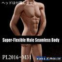 【TBLeague】male seamless body PL2016-M31 TBリーグ 1/6スケール シームレス男性ボディ(ヘッドなし)
