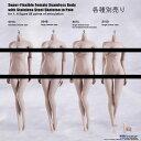 【TBLeague】female seamless body PALE series not head S01A S04B S07C S10D TBリーグ 1/6スケール シームレス女性ボディ ペール(ヘッドなし)
