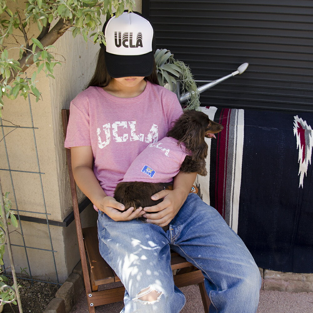 "UCLAトライブレンドTシャツ ""パームツリーUCLAロゴ"" MENS&DOG"