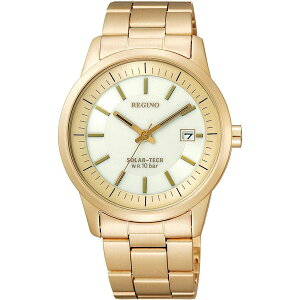KH2-227-11CITIZENシチズンREGUNOレグノメンズ腕時計