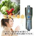 家庭用 浄水器 水処理装置【エルセ】家ごと丸ごといいお水!05P03Dec16