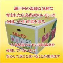 広島産レモン