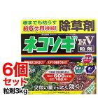 【レインボー薬品】ネコソギエースTX粒剤3kg散布容器と手袋付/除草庭根