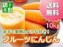 ニンジンジュースに最適!【送料無料】【にんじんジュースに最適!】フルーツにんじん10kg【わけあり限定品】熊本産ご予約承り中
