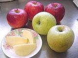 【にんじんジュースに最適!】ジュース用りんごご予約承り中