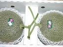 肥後グリーンメロン2玉入り(2L〜3Lサイズ)