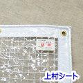 ビニールカーテン透明糸入り0.3mm厚x幅50-90cmx高さ50-100cm【糸入り透明ビニールカーテン】【ビニールシート】