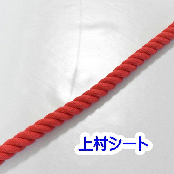 【楽天市場】カット販売 赤 エステルカラーロープ 直径10mm ...