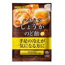 UHA味覚糖 機能性表示食品 ハチミツしょうがのど飴 1袋
