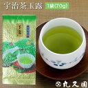 玉露(70g袋) 煎茶と違う甘みのあるお茶です お手軽価格の京都……