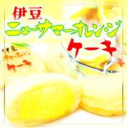 オレンジ ニューサマーオレンジケーキ