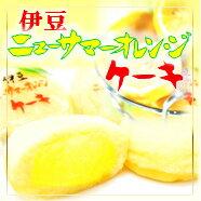 【東伊豆名産】ニューサマーオレンジの果汁を使用!元祖!ニューサマーオレンジケーキ【大】15...