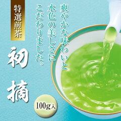 【煎茶・日本茶・緑茶・茶葉】【煎茶 初摘】 100g袋入【京都 お茶・煎茶・日本茶・緑茶・茶葉】