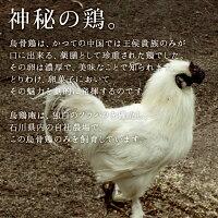 【TV登場】【金沢の烏骨鶏カステラ】【うけいあん】烏骨鶏かすていら【祝】・【金箔】(2号)2本入りセット【内祝い】10P27May16