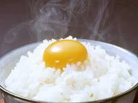 烏骨鶏の希少な卵は、コクがあって滋養も豊富。最高級の卵です。【送料無料】【烏骨鶏 卵】【う...