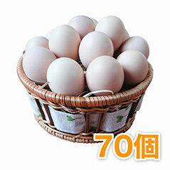 烏骨鶏の卵 (うこっけいのたまご ウコッケイのタマゴ) 70個