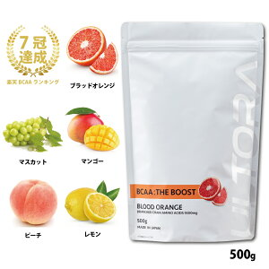 BCAA国産500gアミノ酸人工甘味料無添加トレーニングダイエットエネルギー補給配合健康マルトデキストリンプロおすすめパウダーバリンロイシンイソロイシン味
