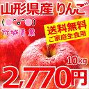 【楽天スーパーSALE★今ならクーポン利用で500円OFF!】山形のりんごは竹城青果へお任せくださ...