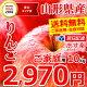 山形県産 りんご サンふじ 10kg (ご家庭用/22玉〜46玉入り/生食可)【あす楽対応…