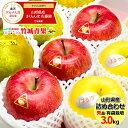 【11月上旬〜日時指定OK】冬ギフト 冬の果実3色詰め合わせ