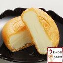 大人気・あっさりしたミルクアイスと香ばしい皮のアイスモナカ手作り 宇和島かどや・オリジナル...