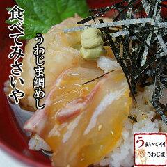 100%手造り プリプリの健康真鯛と食欲をそそる手造りたれ宇和島鯛めし秀長水産 鯛めし 3食...