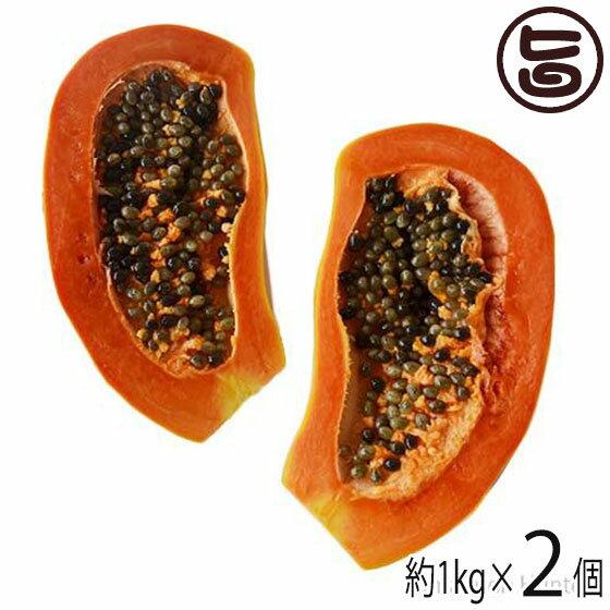 沖縄県産 フルーツパパイヤ 約1kg×2個 条件付き送料無料 沖縄 土産 人気 南国フルーツ
