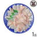 天然 アジの薄造り1〜2人前90g×1皿 島根県 新鮮 人気 希少 条件付き送料無料