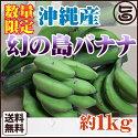 沖縄産数量限定幻の島バナナ