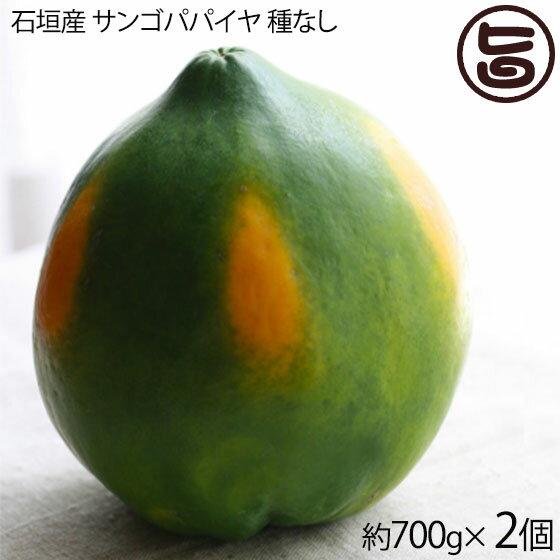フルーツ・果物, パパイヤ  700g2 13.8