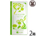 ケイズアーク 柚子茶 いっしょうが 18g×9包×2箱 しょうが湯 国産 送料無料