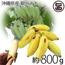 【今が旬】 期間限定 沖縄県産 銀バナナ 約800g 沖縄 土産 バナナ 自然栽培(化学肥料・農薬不