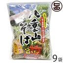 シンコウ 八重山そば 2食入り×9袋 沖縄 人気 琉球料理 定番 土産 送料無料