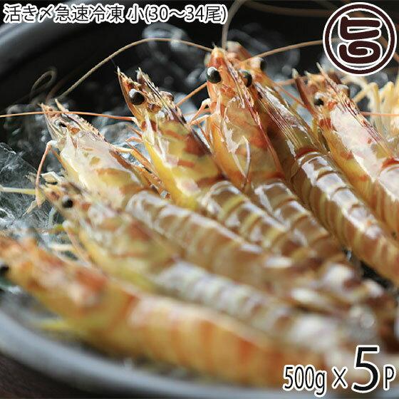 魚介類・水産加工品, エビ  500g (3034)5P